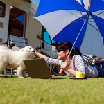 Are RV Parks Pet friendly?