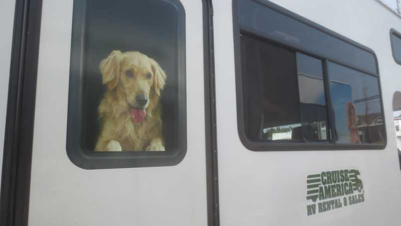 Rv-rental-travel-with-pets